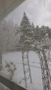 雪遊び①積雪